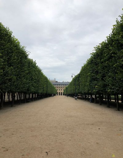 Palais Royal Jardins Trees in perspective